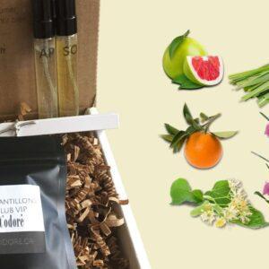 T'Odoré parfums botaniques Simplement Pomelo - Le Coffret No. 1